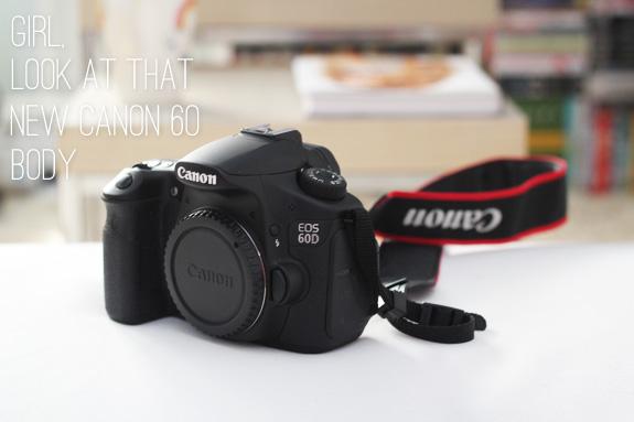 Canon_60D_body01