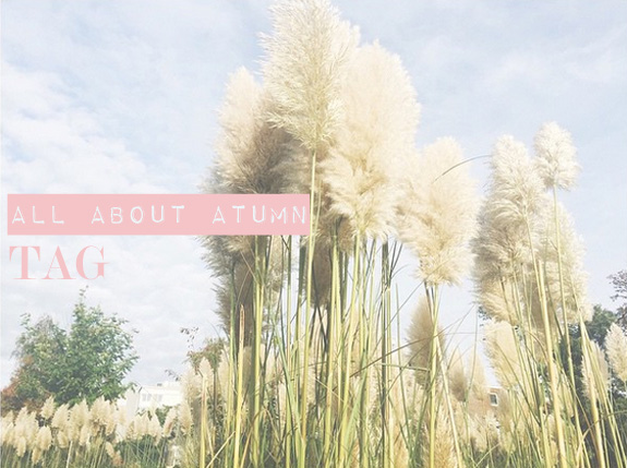 all_about_autumn_tag01