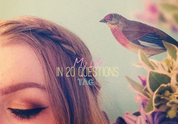 my_life_in_20_questions_tag01