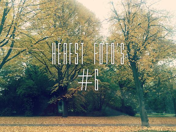 herfst_fotos_15_6_00