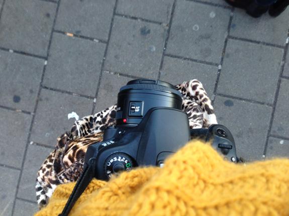 herfst_fotos_4_31