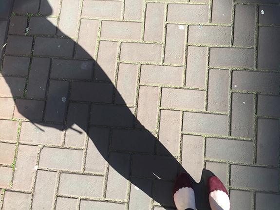 lente_foto_15_5_19