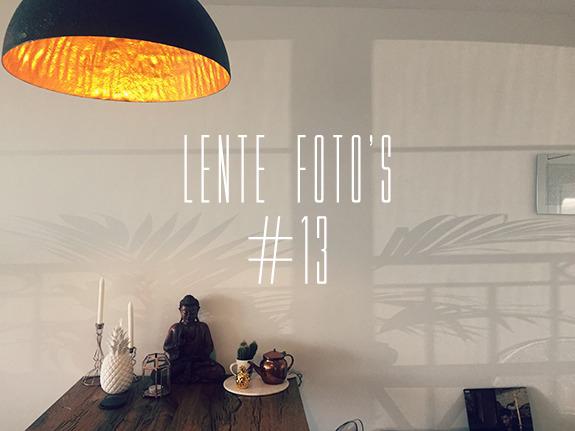 lente_fotos_15_13_00